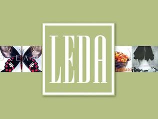 Leslie Evans Design Associates